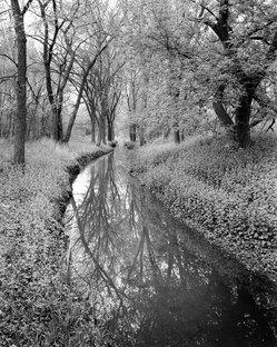 River-scan016.jpg