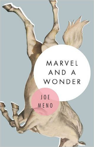 Gapers block gb book club chicago books book club review marvel and a wonder by joe meno fandeluxe Gallery