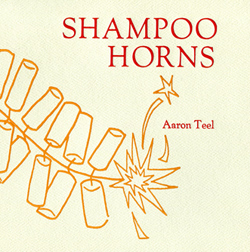 Shampoo Horns by Aaron Teel