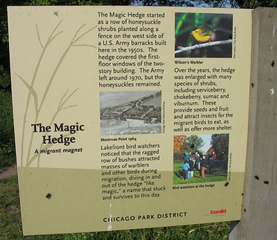 04232007_hedgesign.jpg