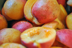apricotsauce.jpg