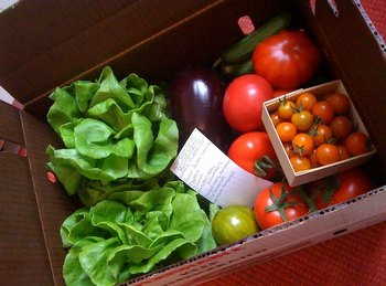 Thumbnail image for csa box.jpg