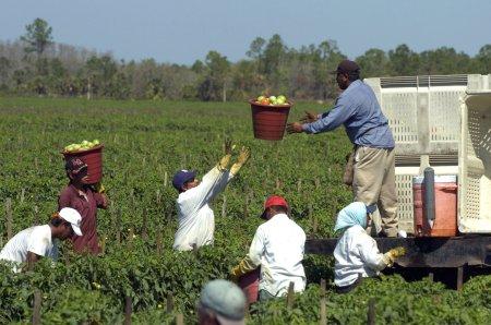 b4s_farmworkers1014_144810c.jpg