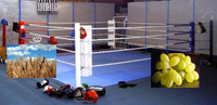 boxingring1.jpg