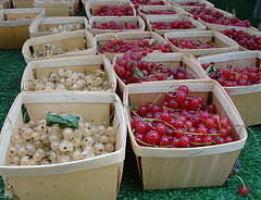 redwhitecurrants.jpg