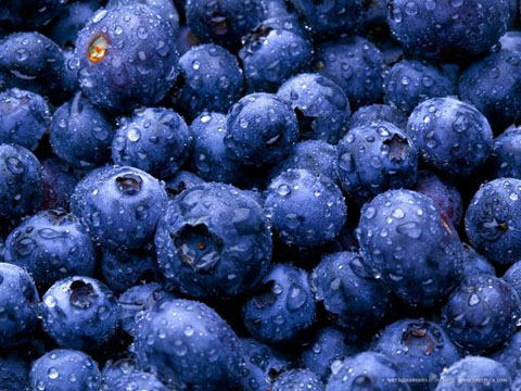 wet-blueberries.jpg