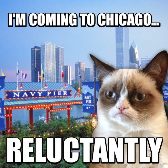 Grumpy Cat at Navy Pier
