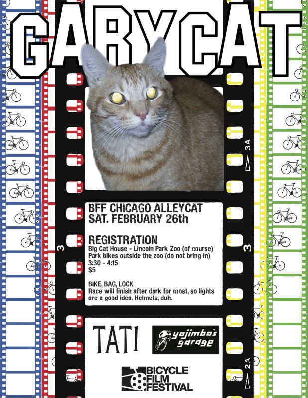 garycatflier.jpg
